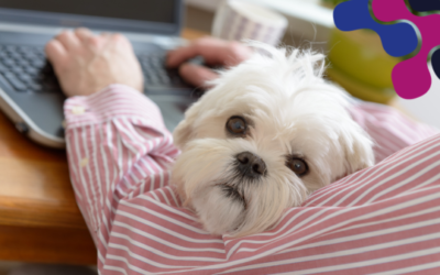 Paws 4 Thought: Pets at Work Policy